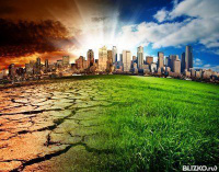 Заказать дипломную работу в Ростове на Дону узнать цены на  Дипломные работы по экологии